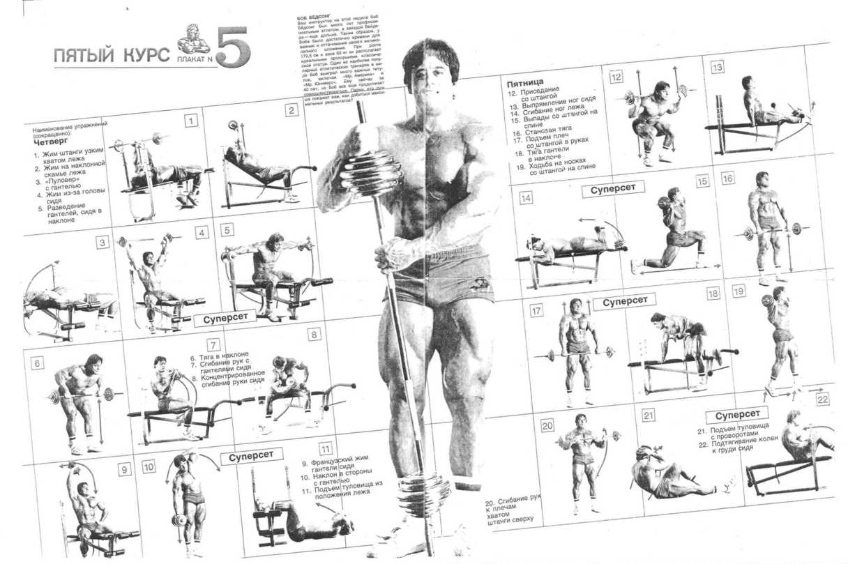 Jun 1, 2005 - joe weiders muscle and fitness training notebook: an illustrated guide to the best